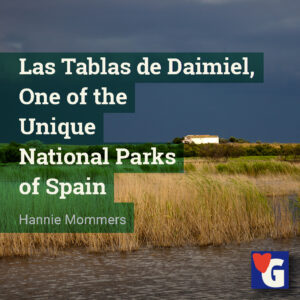 Las Tablas de Daimiel, One of the Unique National Parks of Spain