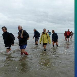 Wadden Sea, the Netherlands. Get Ready for an Adventurous Walk