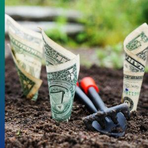 Goal to growth: Earmark your money.